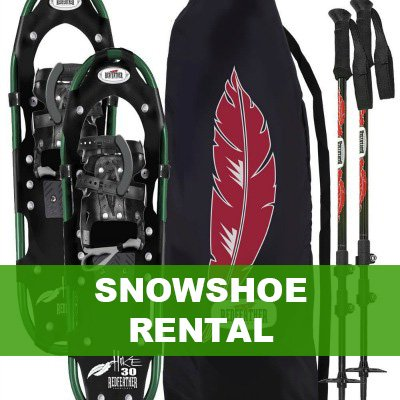 snowshoes and poles