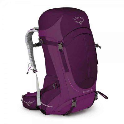 Purple Sirrus Front