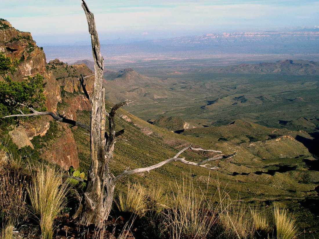 Camping in Big Bend Texas