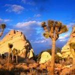 Escape Winter - Camping in the Southern U.S.